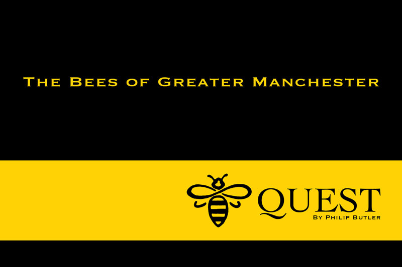 Bee Quest by Philip Butler